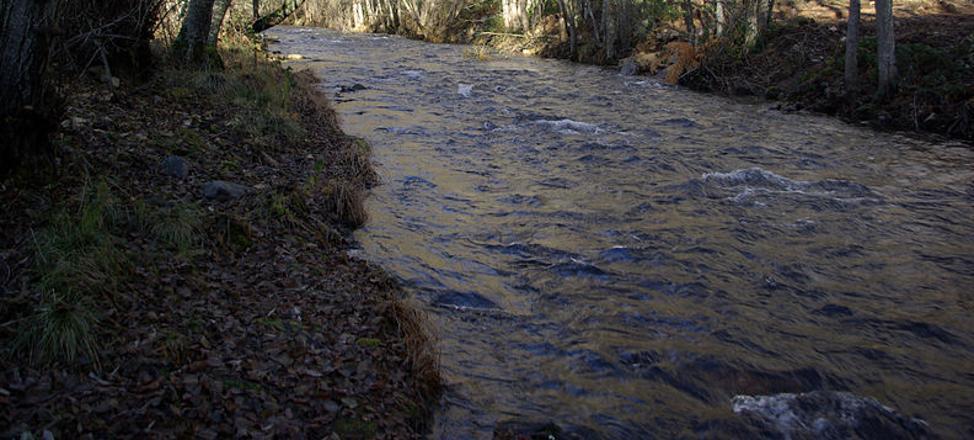 El Ministerio de Medio Ambiente rechaza instalar una central en el río Ancares por el impacto ambiental en la Reserva