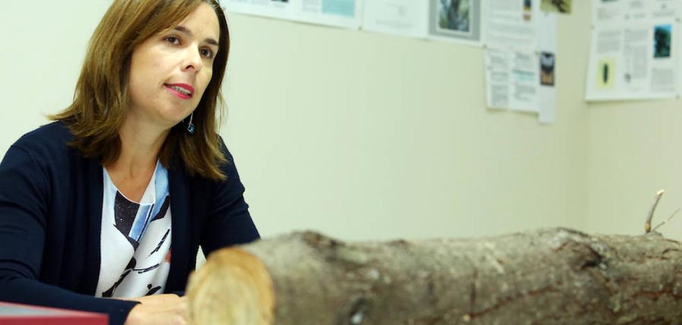 Flor Álvarez: «Los bosques del futuro no van a ser como los que tenemos ahora, tenemos que adaptarnos a una nueva realidad»