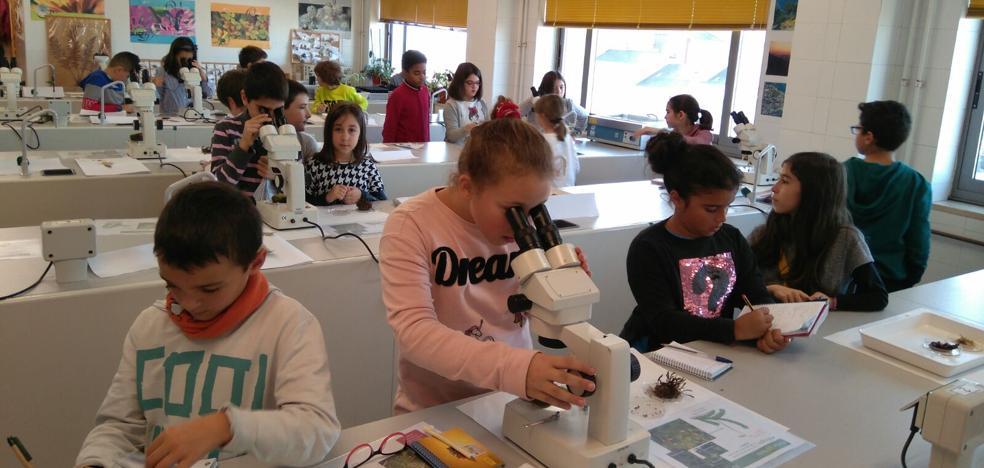 'Identificando seres vivos… en la Universidad', un taller para acercar a los escolares al medio natural