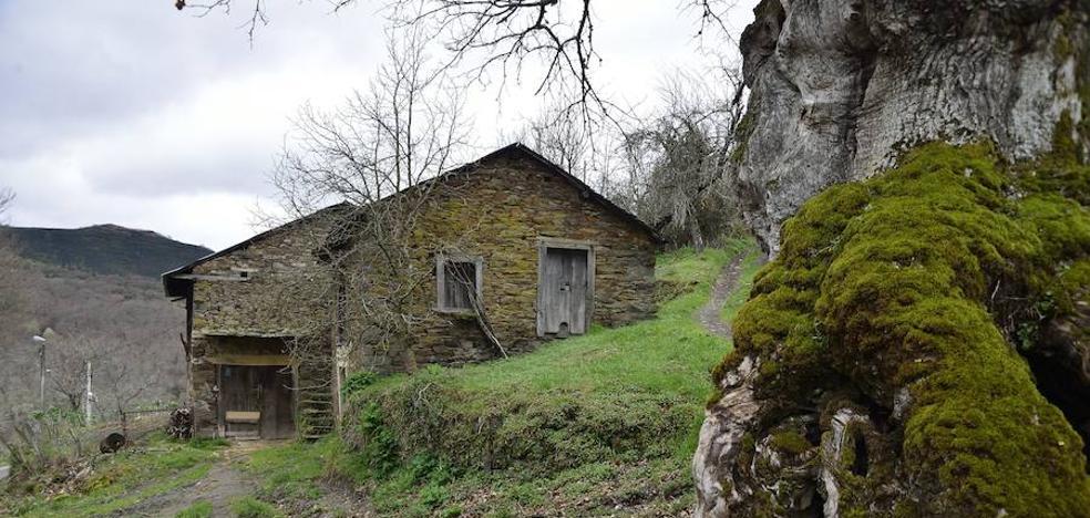 Priaranza organiza una conferencia sobre 'El Bierzo rural y urbano en la Época Medieval'