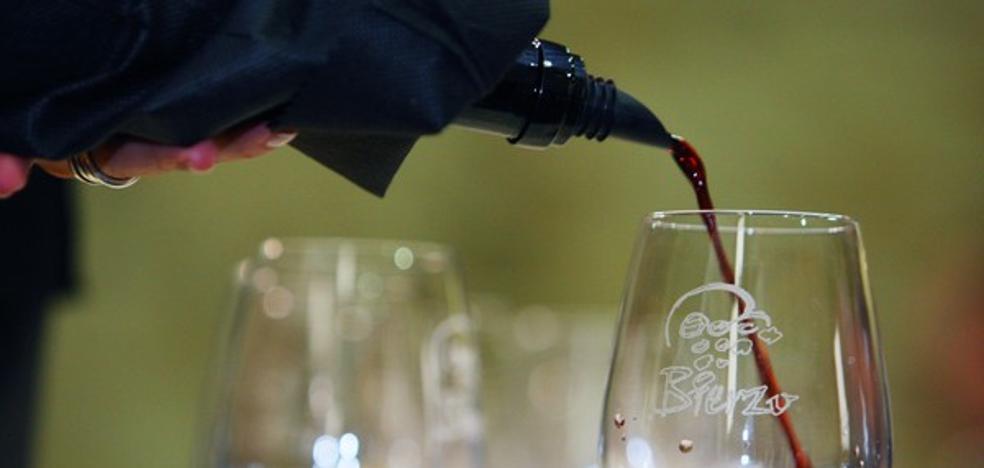 La DO Bierzo cerró 2017 con un récord de más de 9 millones de botellas vendidas en su sexto año consecutivo de crecimiento
