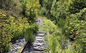 El Consejo prioriza la recuperación del tren turístico pero cree que puede ser compatible con la vía verde