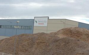 La Junta concede autorización ambiental para la planta de biomasa de Forestalia