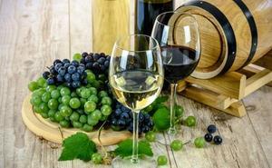 La gestión de las empresas vitivinícolas centra el interés de un curso de la ULE en Cacabelos