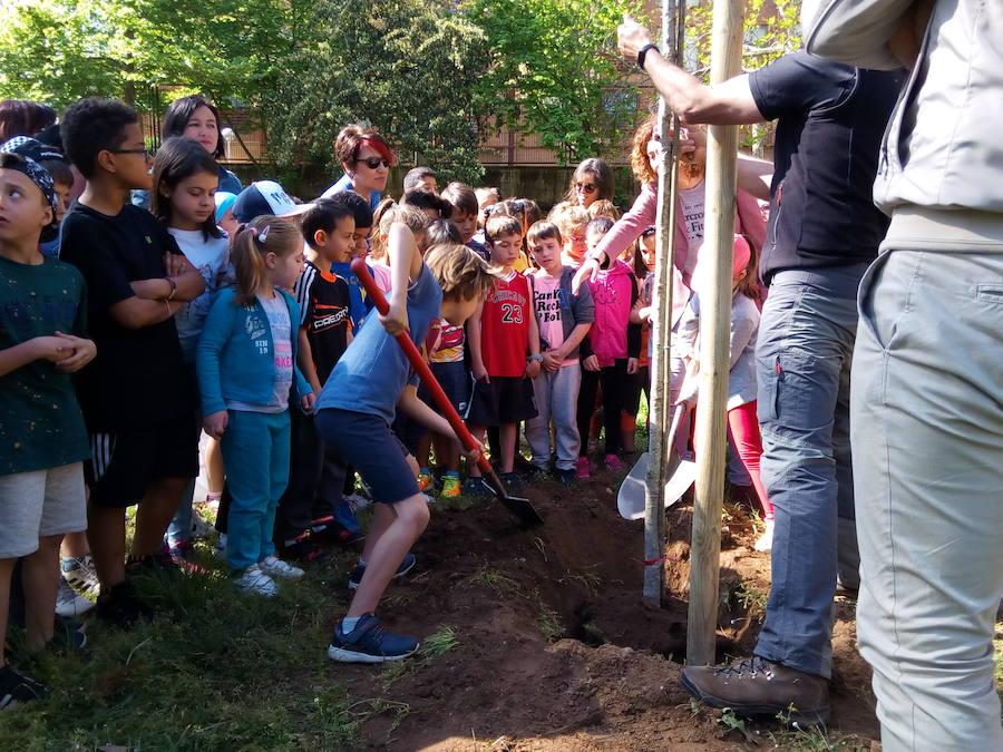 Plantación de árboles en el colegio Peñalba de Ponferrada