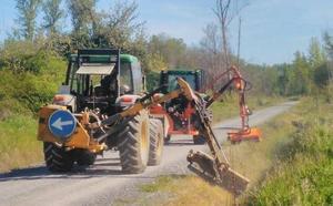 Carracedelo inicia los trabajos de desbroce de caminos y fincas para luchar contra la plaga de conejos