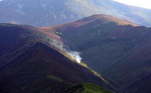 La Junta convoca ayudas para reforestación y creación de superficies forestales por valor de 8 millones