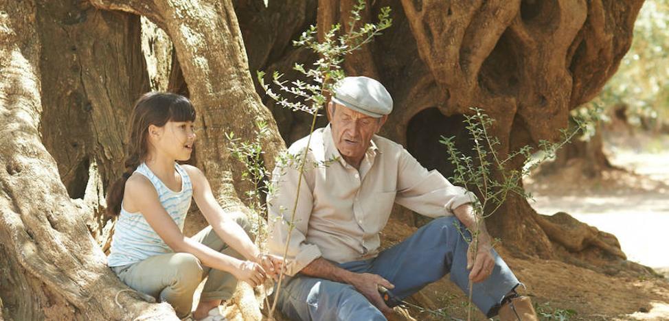 'El olivo' da continuidad al ciclo del Musac 'Planeta cine. Películas en defensa del ecosistema'