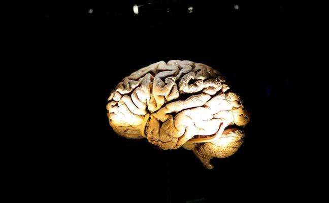 La inteligencia artificial podría adelantarse al cáncer