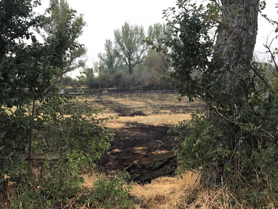 Fuego forestal en Navatejera