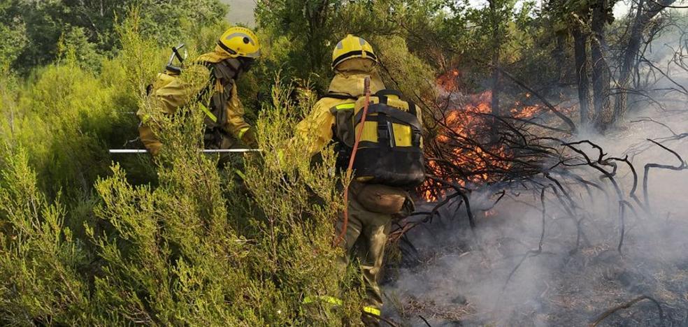 La Junta pide «colaboración ciudadana» ante los reiterados incendios provocados en el Bierzo