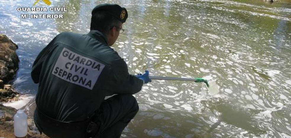 El maltrato animal concentra el 25% de los delitos denunciados por los agentes del Seprona