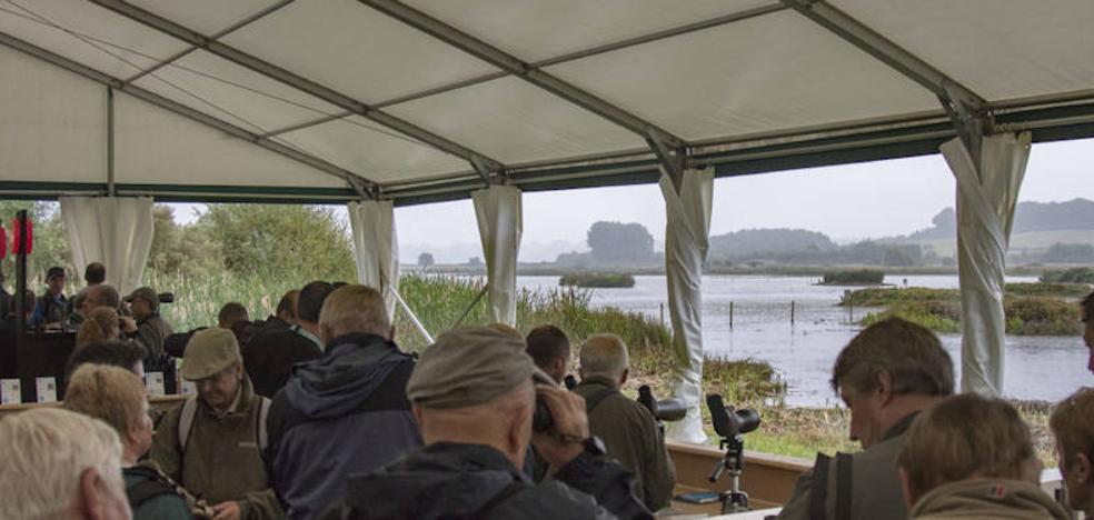 La Junta acude a la Feria Birdfair de Rutland para promocionar el turismo ornitológico y de observación