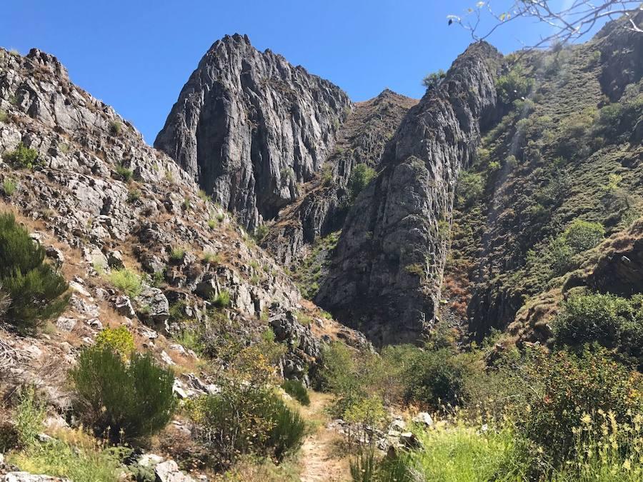 Carrera en el Alto Bernesga