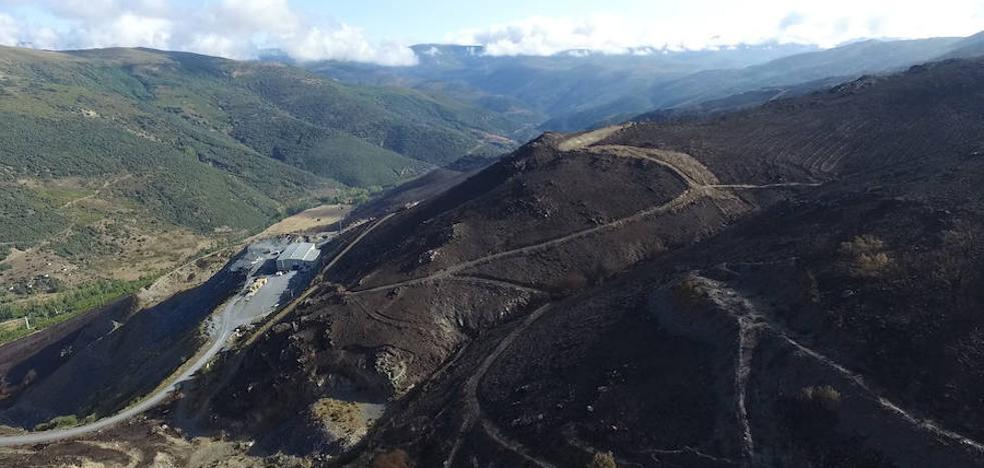 Proponen incluir en la Red Natura 2000 todo el espacio afectado por el incendio de La Cabrera