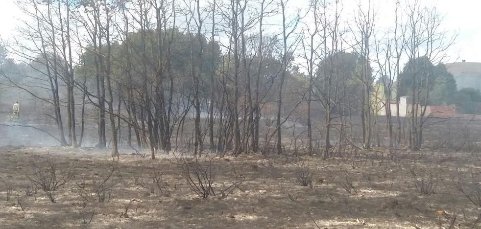 La Junta trabaja «con la mayor precisión posible» para investigar los incendios de la Comunidad