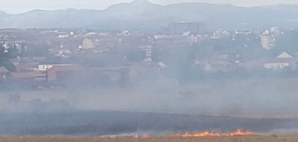 Un petardo, posible causa de un incendio forestal en las afueras de Armunia