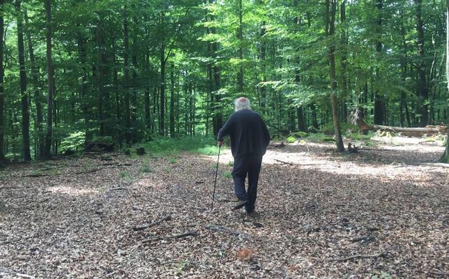 El Musac propone un taller en la naturaleza para conocer el arte de Herman de Vries