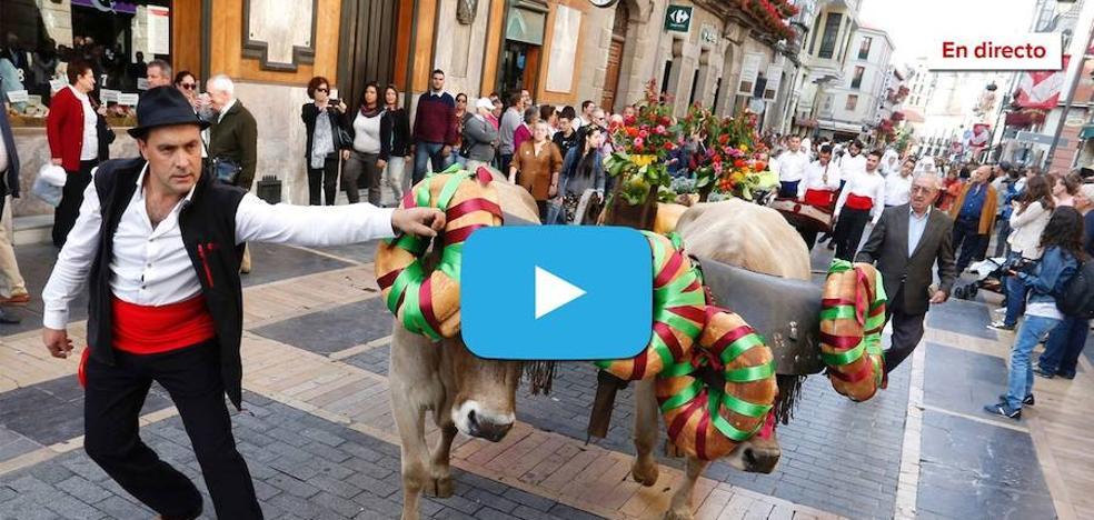 Los carros engalanados llenan de alegría las calles de León