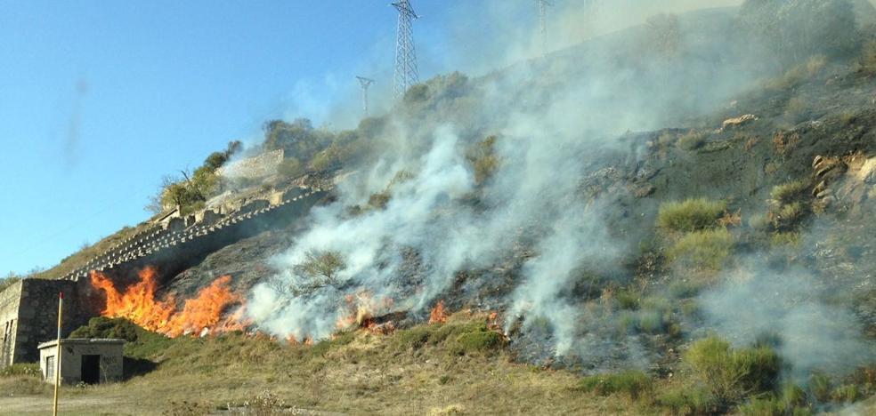 Numerosos efectivos trabajan en la extinción de un incendio a orillas de la N-630