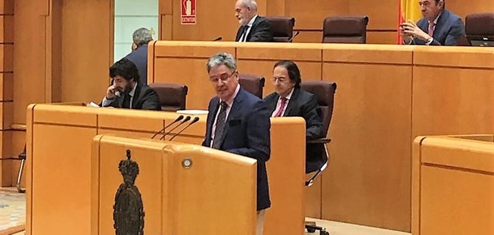 El PSOE lamenta que el PP «no quiera acabar con la especulación» de los terrenos forestales quemados