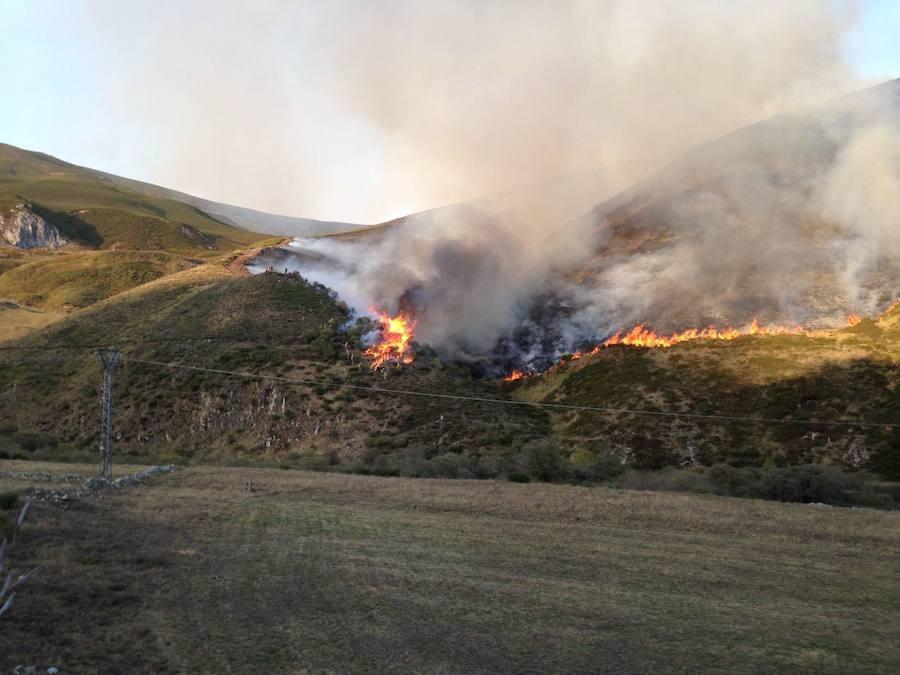 Las llamas en Busdongo