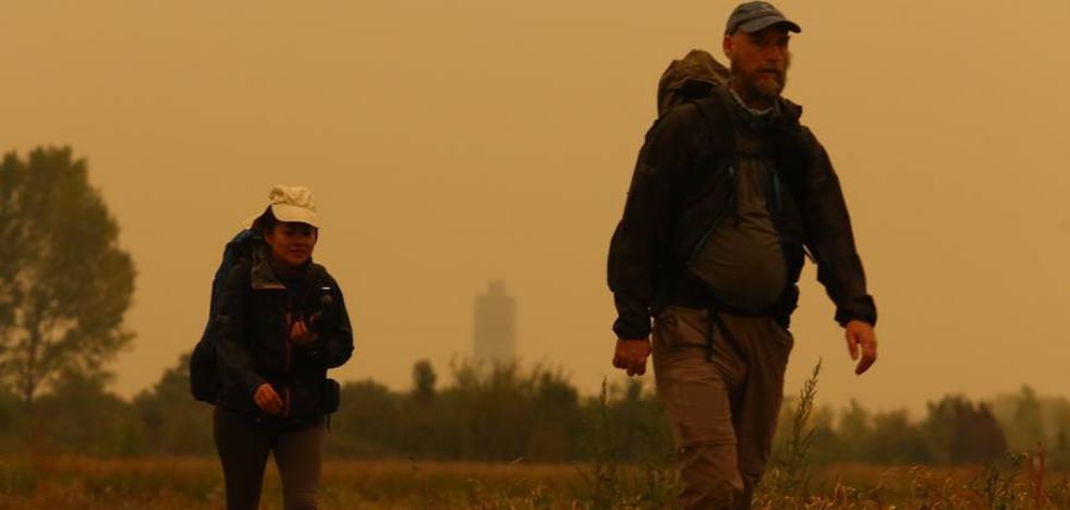 Podemos exige la comparecencia de Suárez-Quiñones ante los incendios de Laciana y El Bierzo
