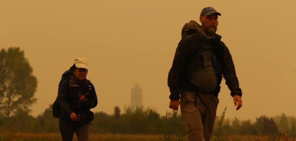 El fuego procedente de Galicia arrasa sotos de castañas y encinas en el Bierzo Oeste