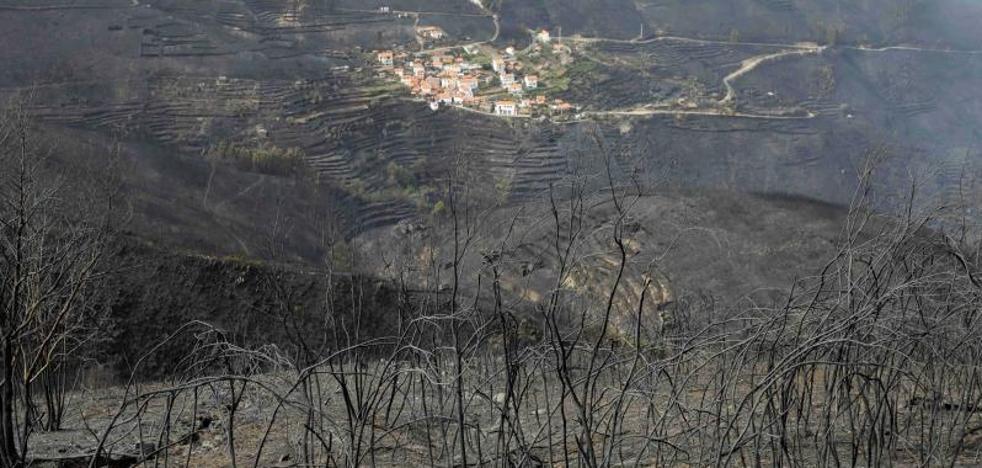 Aumenta a 45 el número de muertos en los incendios de Portugal