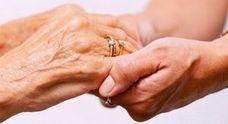 La Diputación licita el servicio de asistencia a domicilio por importe de 16,2 millones