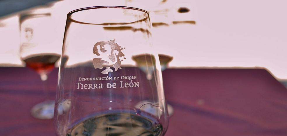 La DO Tierra de León celebra un showroom para la hostelería con la presencia de 27 bodegas