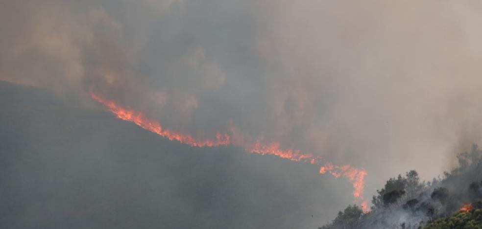 Suárez-Quiñones defiende el dispositivo de lucha contra las llamas tras 2.400 fuegos sin heridos ni casas quemadas
