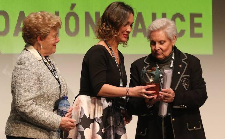 Entrega de los Premios Solidarios ONCE Castilla y León 2017
