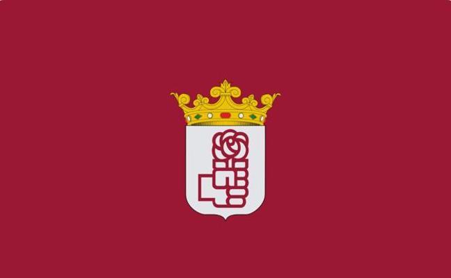 3.000 militantes eligen este domingo al nuevo líder provincial del PSOE