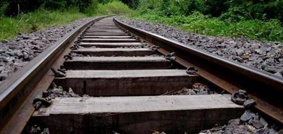 La Plataforma por el Ferrocarril del País Leonés solicita en el Senado que se electrifique la vía férrea Zamora-Medina
