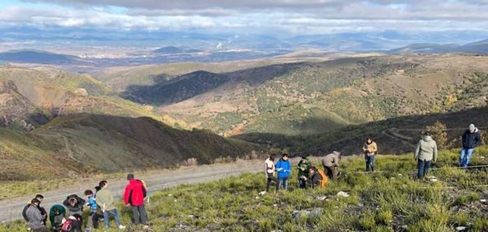 Ponferrada solicitará permiso a Patrimonio para estudiar los restos arqueológicos aparecidos tras el incendio de la Tebaida