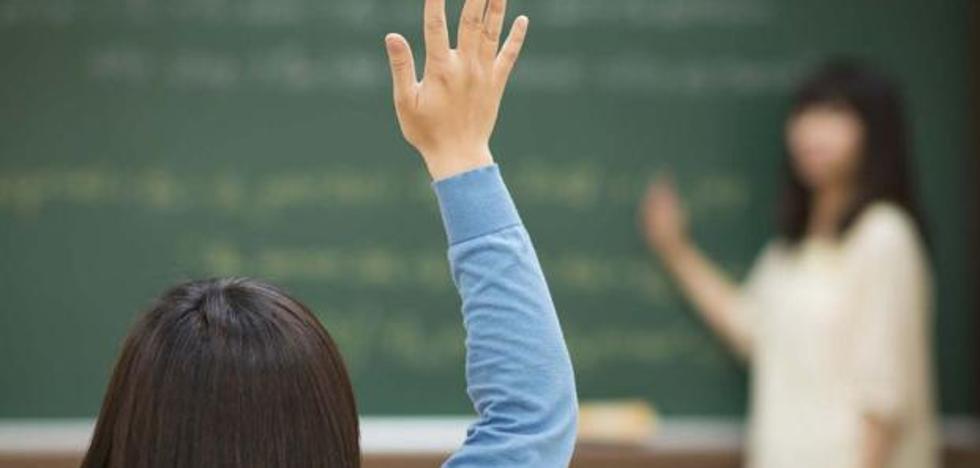 Sobresaliente para los escolares de León en Ciencias, Lengua y en la resolución de problemas en grupo
