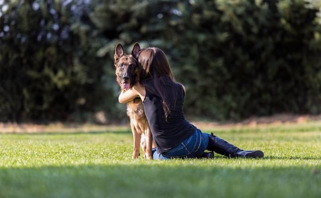 El mejor amigo... de la mujer
