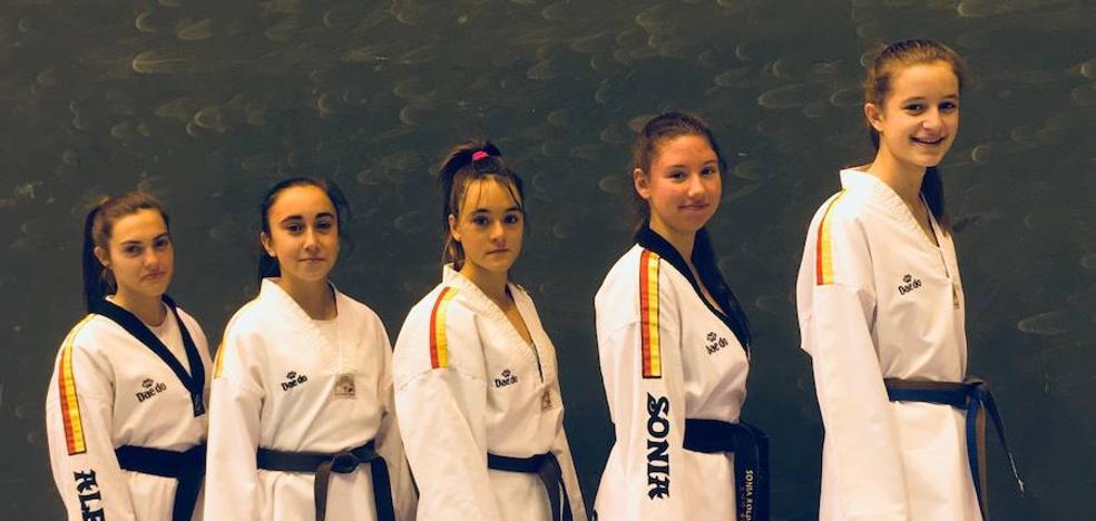 Cinco leonesas, en el Campeonato de España por clubes de taekwondo
