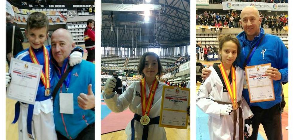 Tres medallas para el Taekwondo Valderas en Castellón
