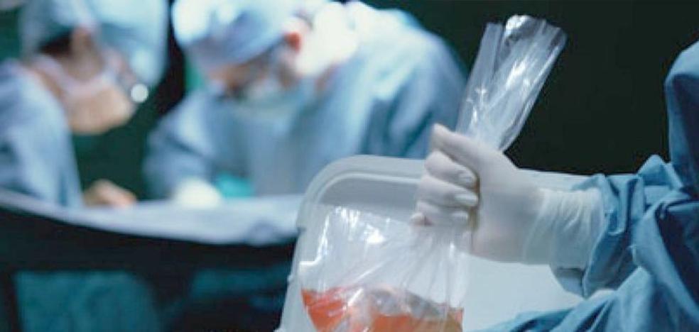 León suma 16 donaciones de órganos hasta el mes de septiembre