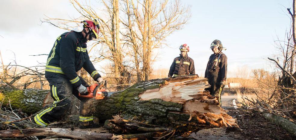 Los Bomberos de León intervienen en numerosas incidencias debido a los efectos del temporal en la capital