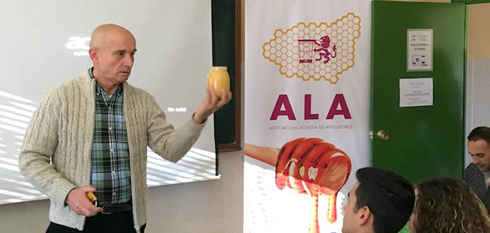 La miel leonesa se presenta en las aulas de cocina de la provincia