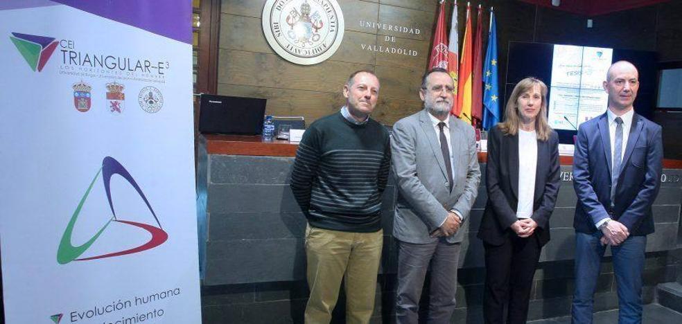 El CEI Triangular E3 organiza una jornada conjunta de las Escuelas de Doctorado