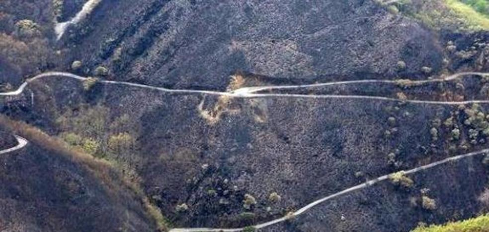 Folgueral reclama la convocatoria «inmediata» de la mesa sobre el incendio de la Tebaida berciana