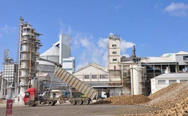 Azucarera recibe 400.000 de toneladas de remolacha en su planta de La Bañeza