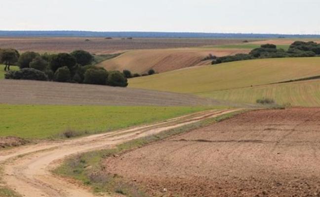 La Junta aprueba en Los Oteros la concentración de 18.494 hectáreas con una inversión de 17,2 millones