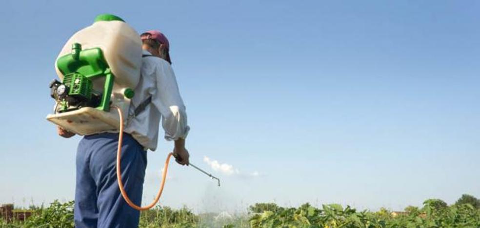 La alianza Ugal-Upa y Ucale-Coag denuncian que la Consejería de Agricultura acumula tres años de retraso en la entrega de carnets fitosanitarios