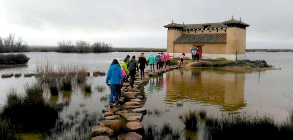 Los alumnos de 1º de ESO de La Asunción visitan las Lagunas de Villafáfila