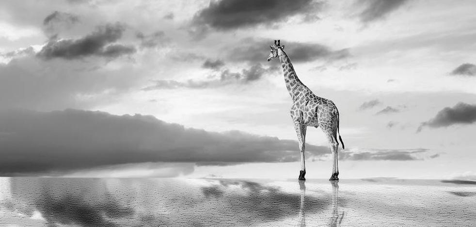 El leonés Richard Le Manz toca el éxito en el mejor concurso de fotografía en blanco y negro del mundo